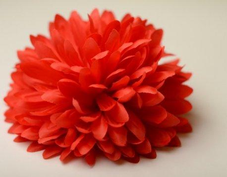Оптом цветы барнаул